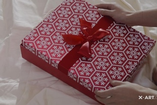 X-Art · All i want for Christmas (Adria)